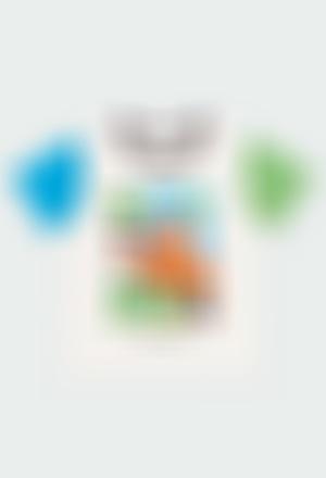 Camiseta punto tricolor de bebé niño